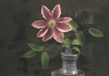 Catharina Marlowe: Clematis in Purple Vase