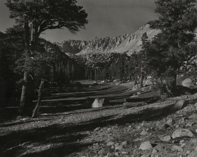 Cedric Wright: untitled (probably Tuolumne Meadows, Yosemite)
