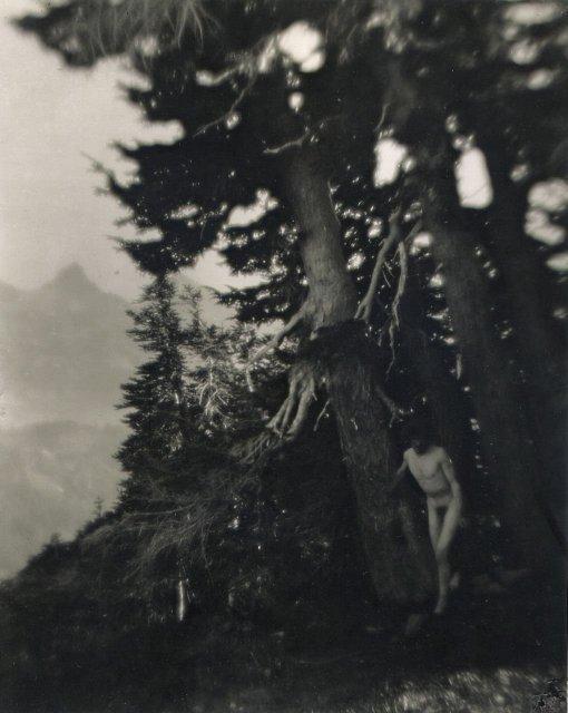 Imogen Cunningham: Roi on Mt. Raineer, 6