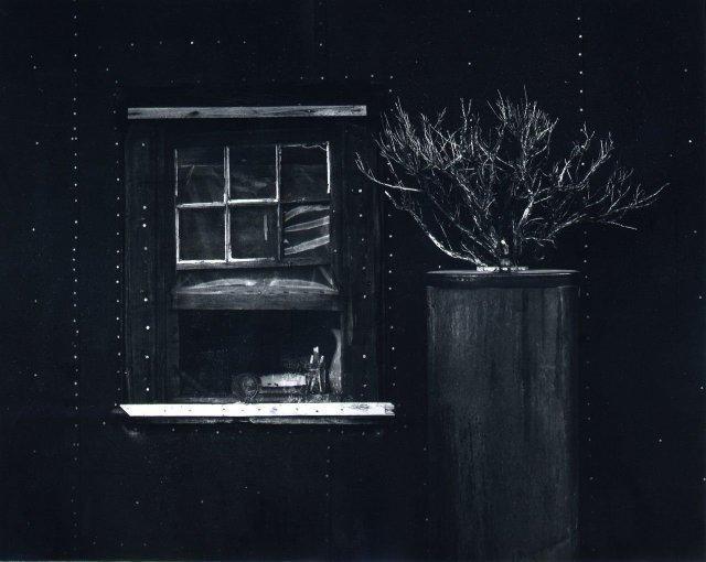 Oliver Gagliani: Window Sage