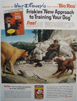 Walt Disney & Friskies Big Red Ad 1962