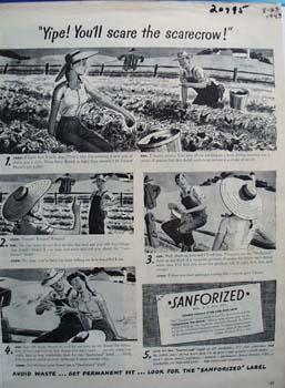 Sanforized Scare The Scarecrow Ad 1943