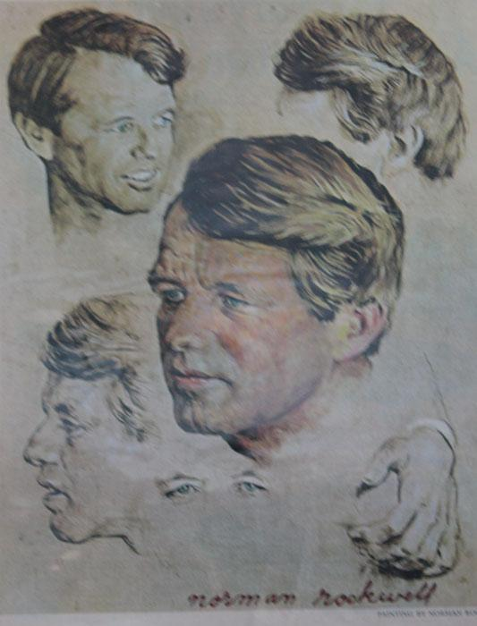 Bobby Kennedy's Article