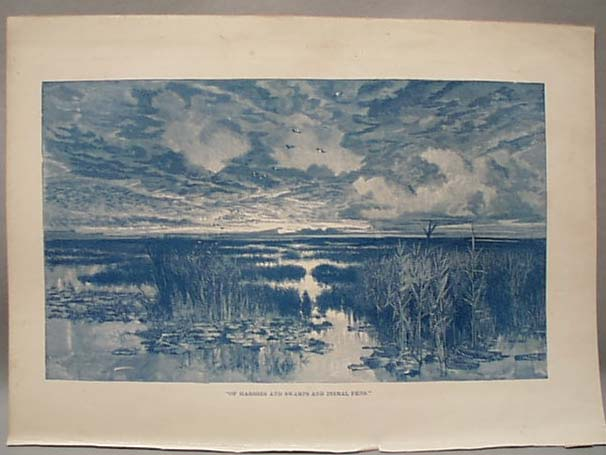 1888 Litho Of Marshes Swamps and Dismal Fens