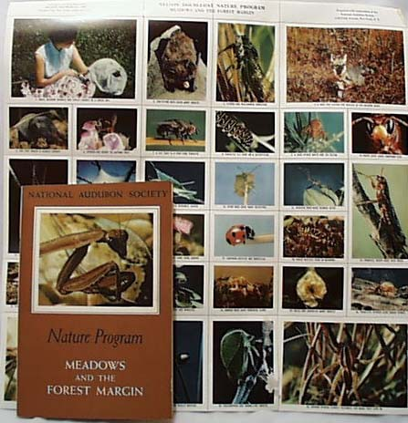 National Audubon 1956 Meadows and the Forest
