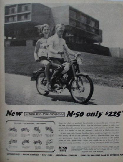 Harley Davidson M 50 Motorcycle 1964 Ad