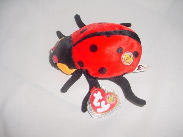 Ty COUNTESS the LADYBUG~ Beanie Baby of the Month~ Lady Bug