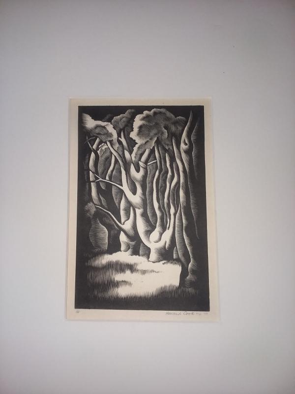 Howard Cook (American, 1901-1980) Etching/Woodblock of Trees Titled