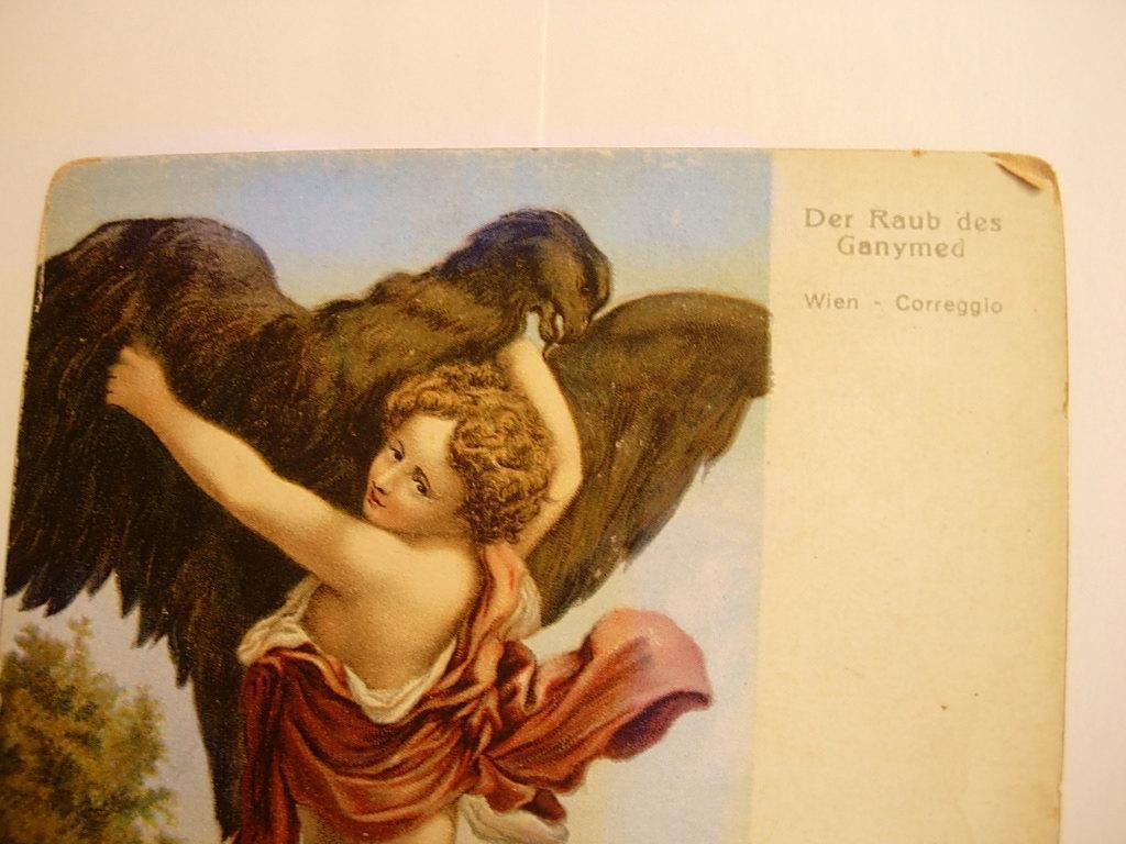 ANtique mythology victorian fantasy postcard Cherub with Bizarre eagle and a dog Aquarius constellation