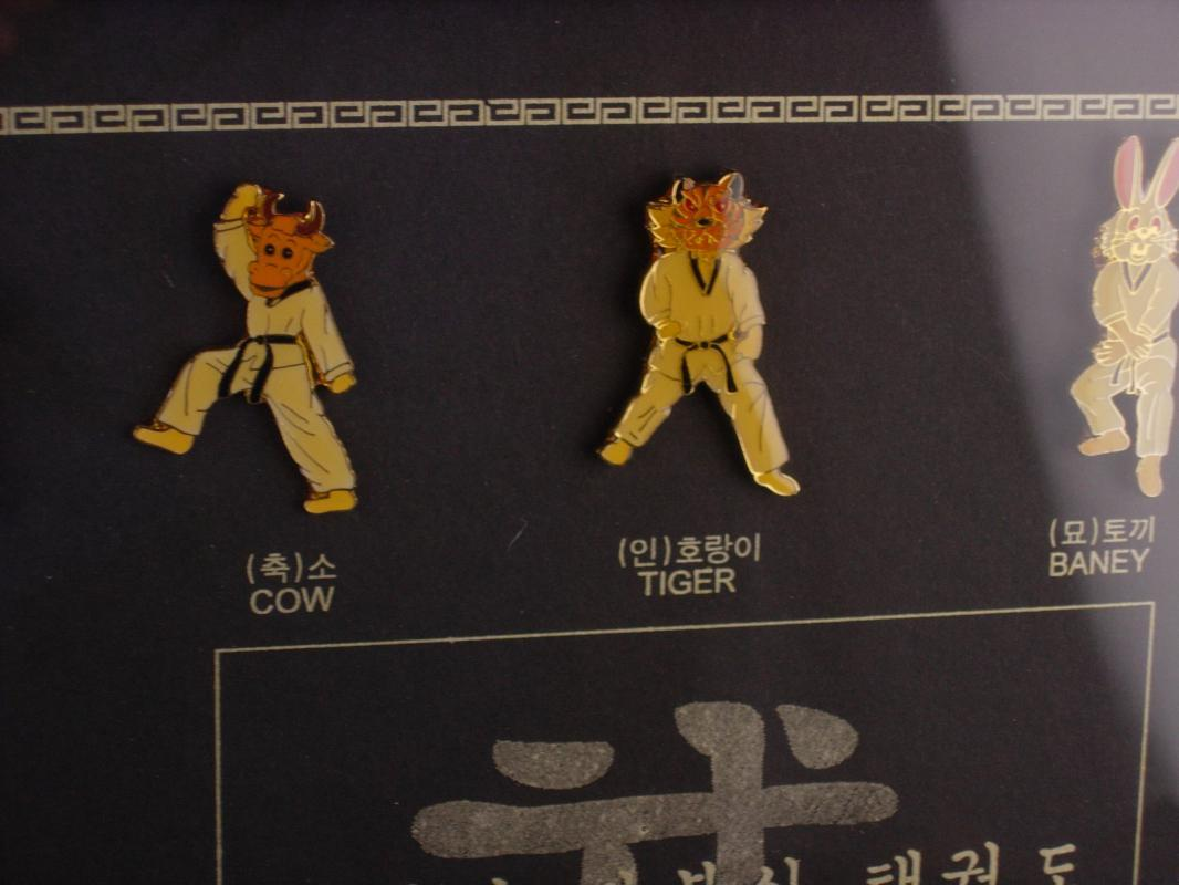 Karate Stick pin set - Framed Taekwondo chinese horoscope - fighting competition - martial arts  gift - framed karate pin set -