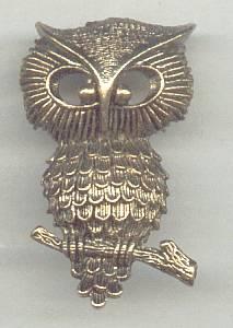 Brooch/Aniqued  Goldtone Owl