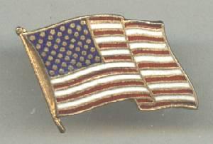 Brooch/Patriotic Waving Flag Pin