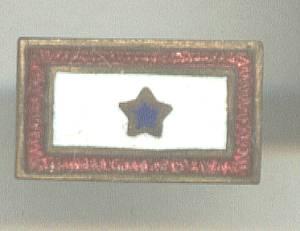 Service Pin(s)/WWII Production Award Star Bar Pin