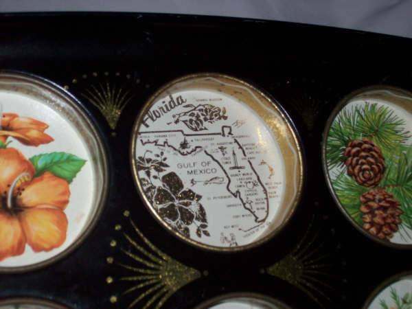 Souvenirs/Florida Tin Drinks Tray With Graphics