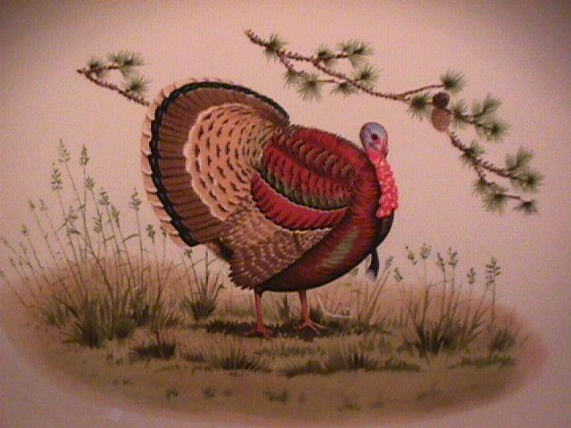 Carole Stupell Designs (Thanksgiving Turkey) Platter