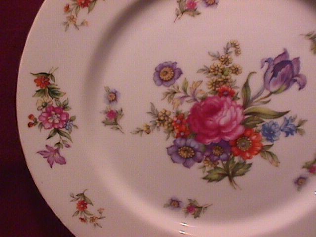 Harmony House Fine China (Dresdania) Dinner Plate