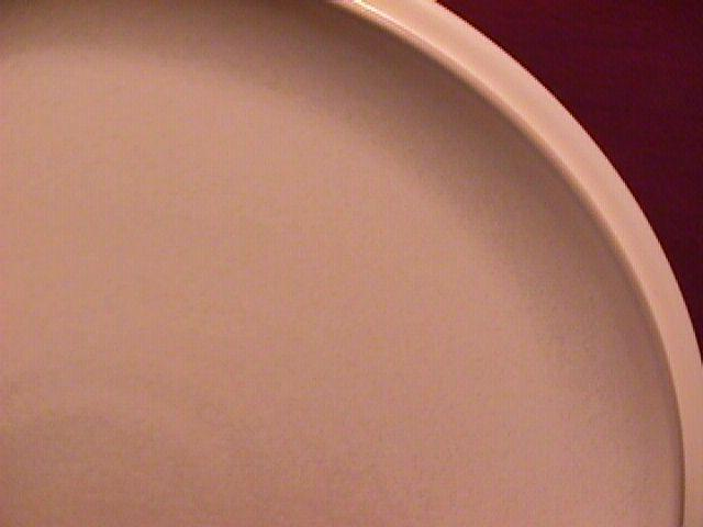 Denby China (Energy) Dinner Plate