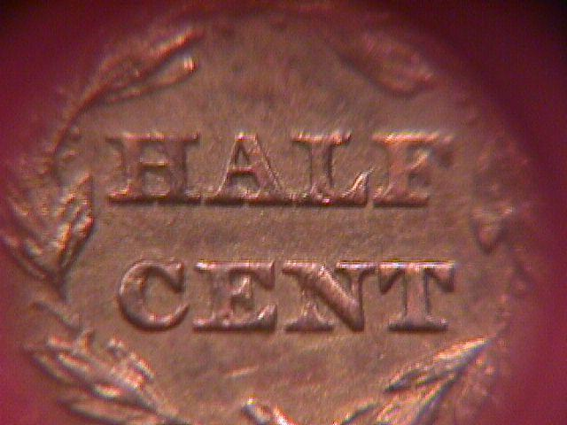BRAIDED HAIR COPPER HALF CENT-1855 ALMOST UNCIRCULATED-50   Condition