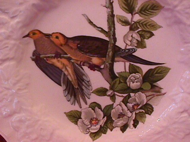 Alfred Meakin China (Carolina Turtle Dove) #17 Lunch Plate