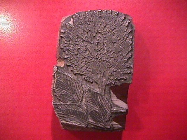 LEAD PRINT BLOCK WITH FLORAL PATTERN