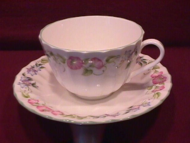 Royal Worcester- Bone China (English Garden) Cup & Saucer