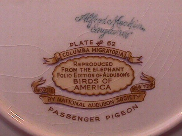 AUDUBONS BIRDS of AMERICA 2 LUNCH PLATES 9