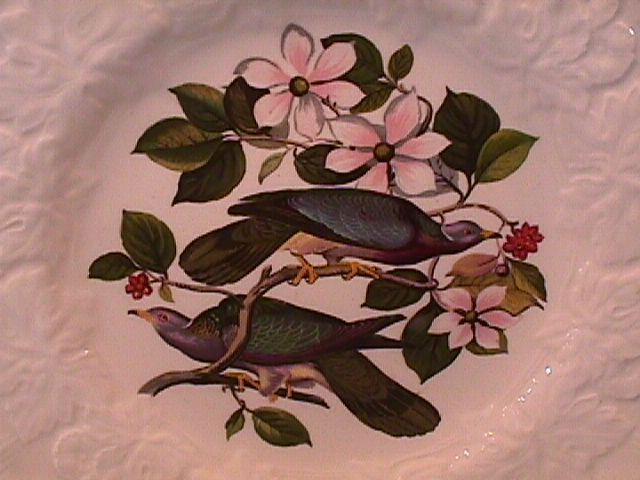 AUDUBONS BIRDS of AMERICA BAND TAILED PIGEON  LUCH PLATE 9