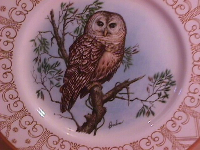 Edward Marshall Boehm, North American Owl Series,