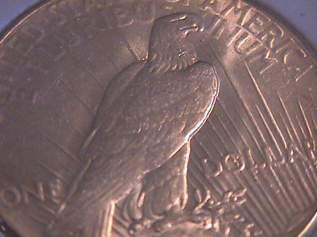 PEACE TYPE SILVER DOLLAR 1927-P  SLABBED BY ANGS MINT STATE-67