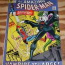 Amazing Spider-man #102 fine/very fine 7.0