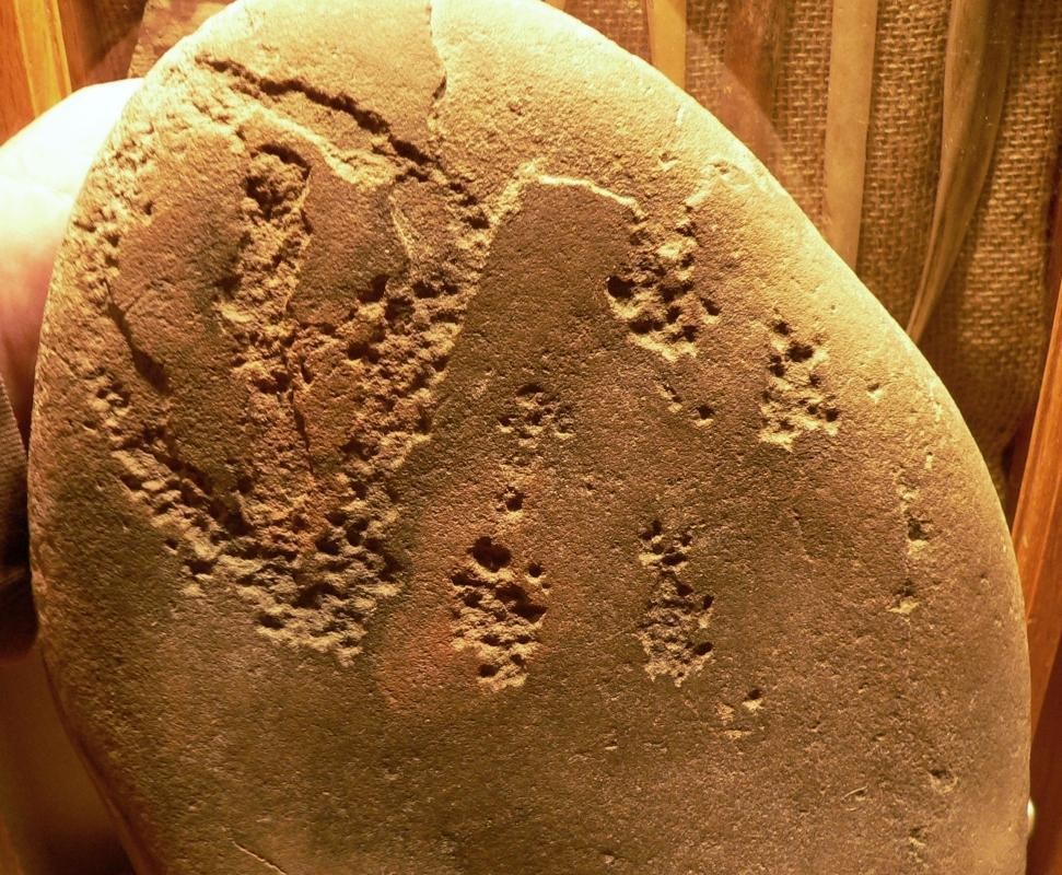 Salt Lake Fremont 100% Authentic Petro Glyph of  a Desert Big Horn Sheep ot Prong Horn