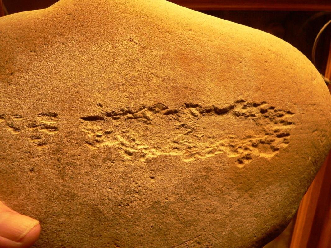 Salt Lake Fremont Anthrophorbic Figurers Rock Art Petro Glyphs Anasazi