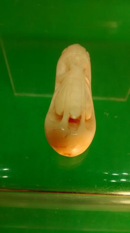 Palm Ivory Cricket Netsuke Slide