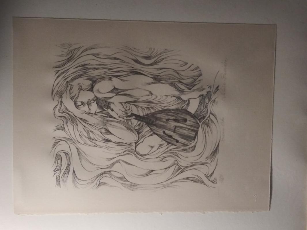 Louise Bussiere Dream Echo sketch