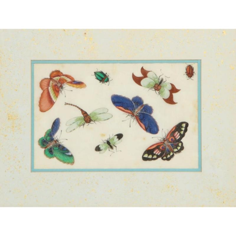 Set of Eight Chinese Rice Paper Paintings of Butterflies and Insects