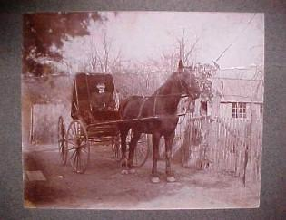 Photo Horse Drawn Carriage - Paper
