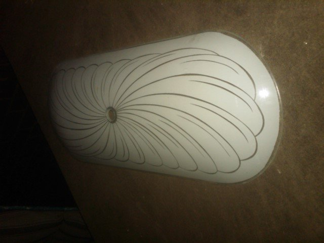 SHELL SEASHELL PATTERN LIGHT BULB ELECTRIC LAMP FIXTURE COVER CURVED GLASS SHADE