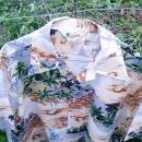 waikiki 76 island tiki party shirt lighthouse sailboat palm tree print polyester fabric garment top retro korea manufactured short sleeve type textile