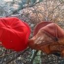 golden sun asgrow cap sew on patch style hat farm type head gear k products orange city Iowa usa garment manufacturer mark
