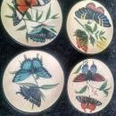 colorful butterfly moth drink coaster set decorative cocktail accessory