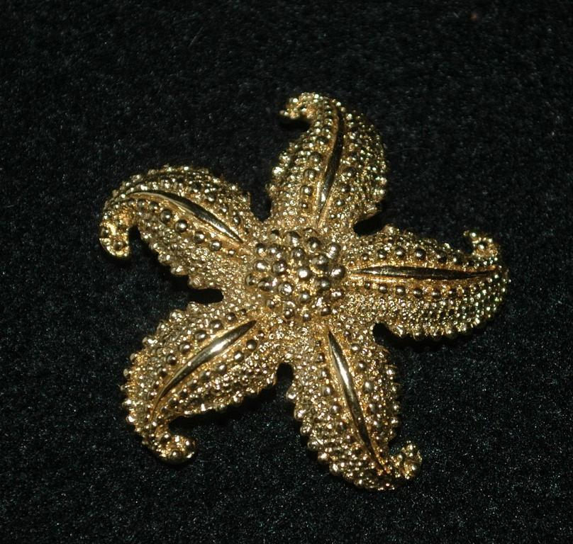 Monet Starfish Brooch Gold Tone Textured Ocean Life