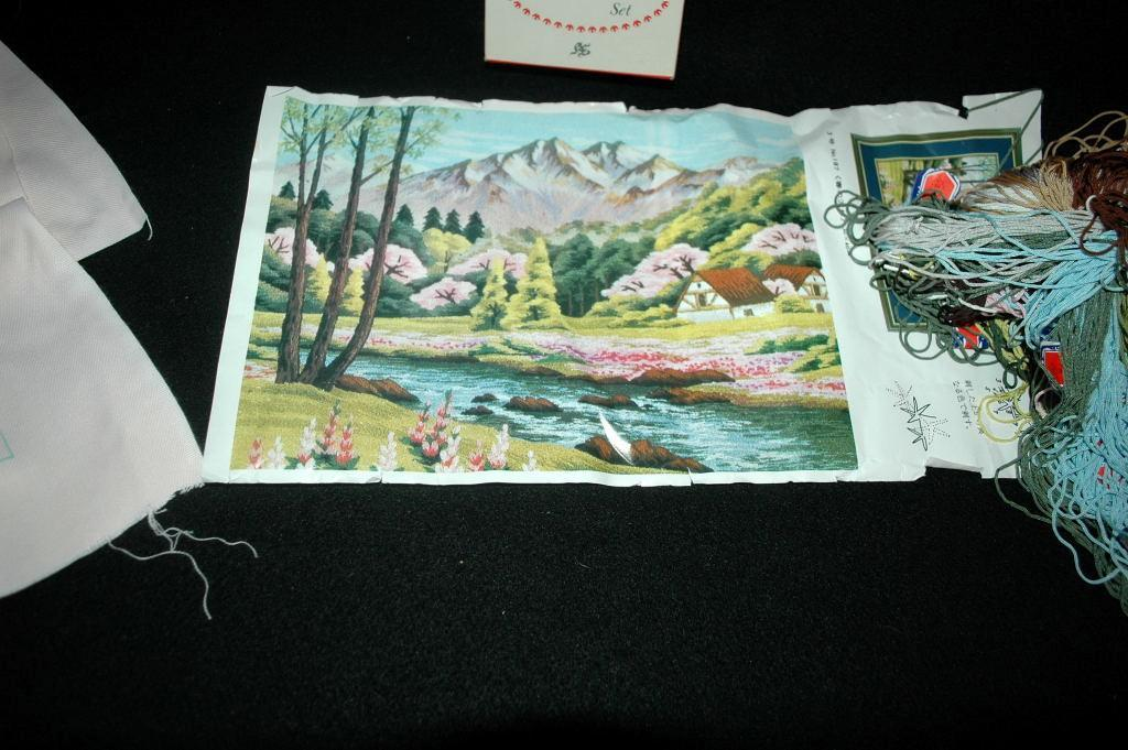 Vintage Japanese Tokyo Bunka Embroidery Kit  unused in box size 3 # T187