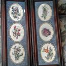 Set of Fruit & Vegetables French  Watercolors  Miniatires 2 Frames 3 paintings in each frame
