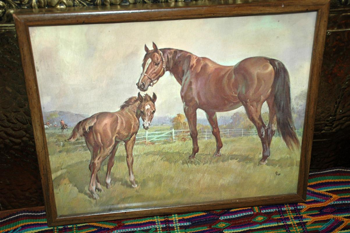Vintage Horse Print Lithograph   DAC New York Litho USA  measures 14