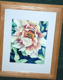 Framed Behind glass Flower Print JoAnn Sullivan