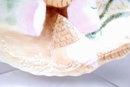 Limoges France,  A. Klingenberg and Dwenger Porcelian Plate Hand painted artist signed  Sea Shell Design