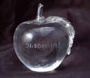 Glass Crystal Paperweight Etched