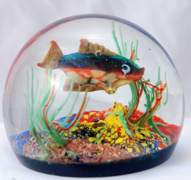 Murano Glass Tropical Fish Aquarium Paperweight, Rare & Old with label