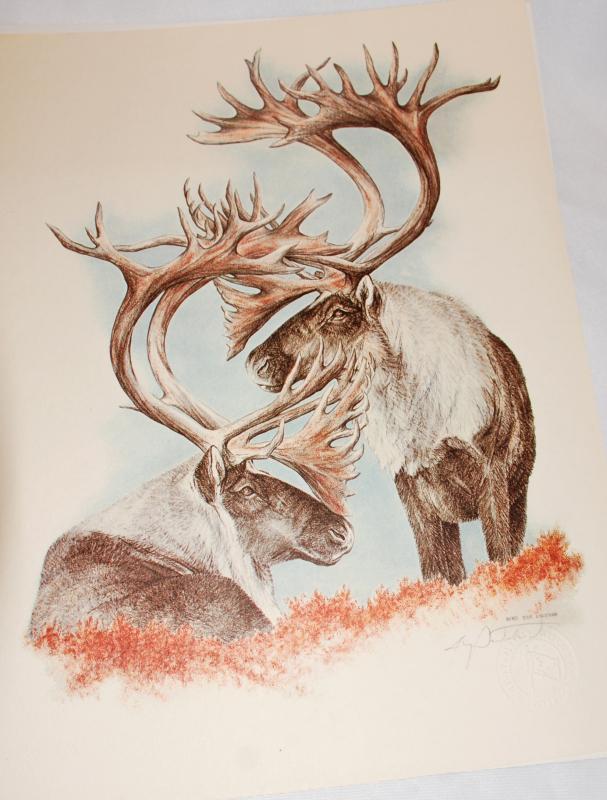 Doug Lindstrom Alaska Caribou Print , Alaska Sketchers Limited Edition.1980