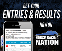 2019-hrn-entries-results-banner-210x175